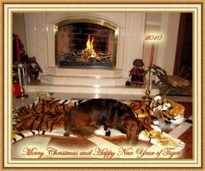 Julkort från Ryssland!