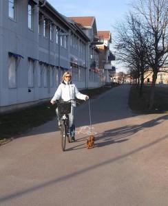 Cykeltur!