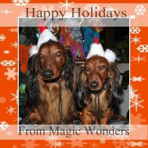 Söta jultaxarna Harry och Ritwa!