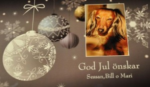 God Jul önskar Sessan,Bill och Mari
