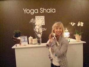 Matte o Jökull på Yoga Shala!