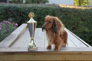 Nordisk champion!
