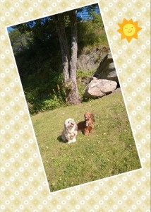 My och Sessan i solen!