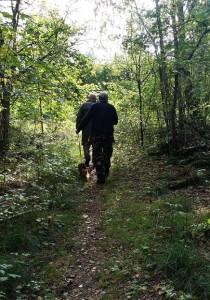 På väg i skogen med klövern.