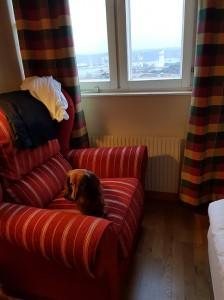Rutinerad hotelltax med egen soffa!