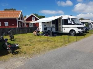 Favvoplatsen med jättehundgård till Sessan!