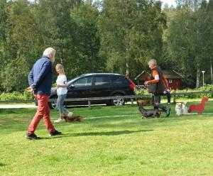 Domaren Ulf Wall inspekterar taxarna.