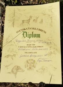 Snyggaste Diplomet!