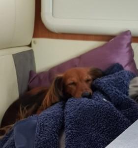 Man sover alltid så gott i husbilen.