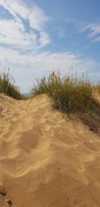 Fin strand i Mellbystrand.