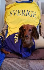 Här hemma hejar vi på Sverige!