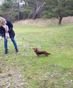 Hon är duktig den lilla hunden!